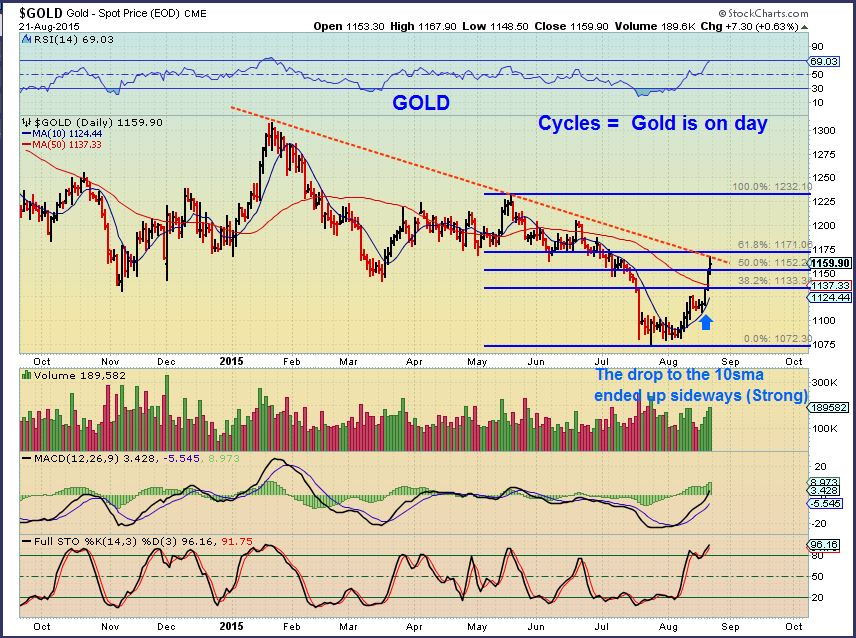 GOLD FIB 8-21