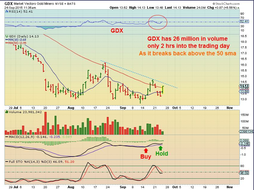 GDX 9-24