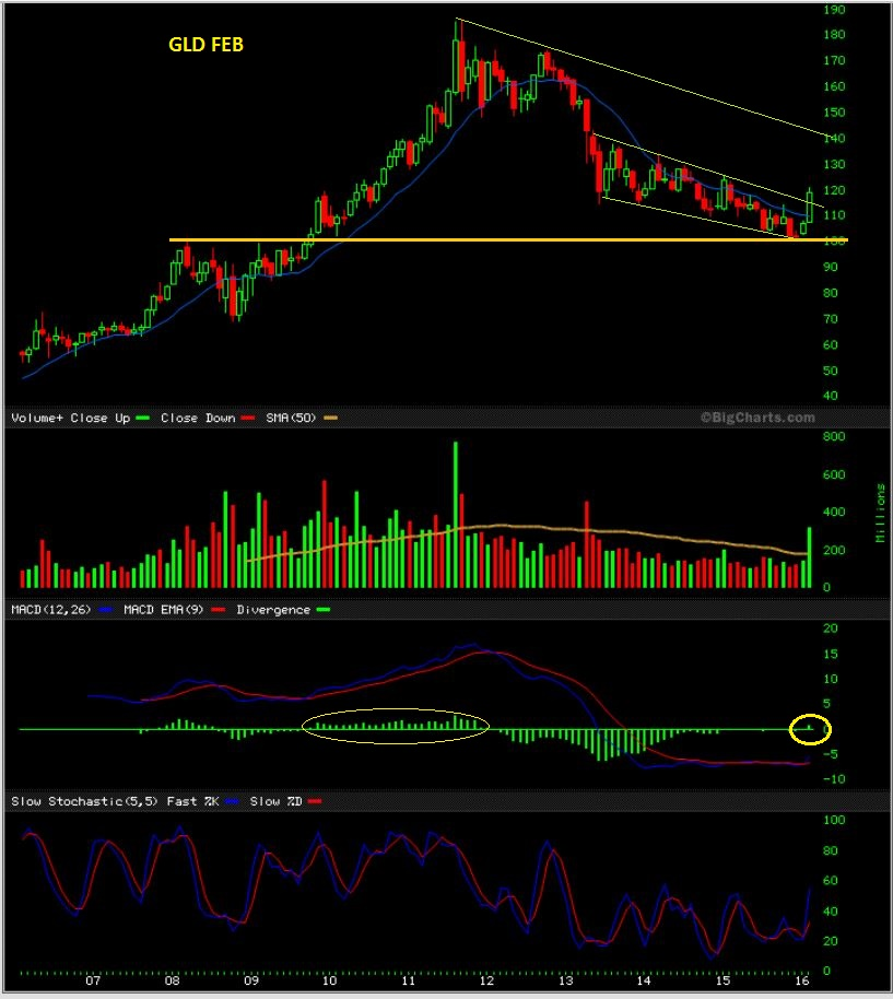 GLD 2-29 monthly